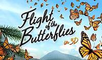 flight-of-butterflies-mark-z-home-selling-team